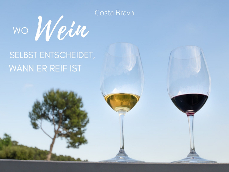 Weingut Mas Molla