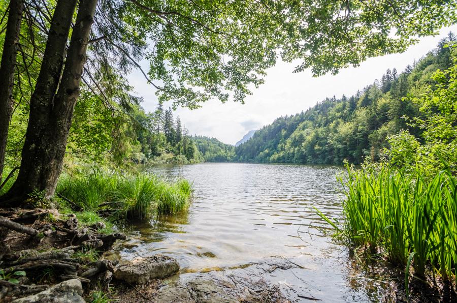 Vier Seen Kufsteinerland